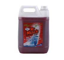 CLEANER - ALL PURPOSE MR MUSCLE 5 LITRE