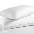 PILLOW WATERPROOF (WIPE DOWN) X 1